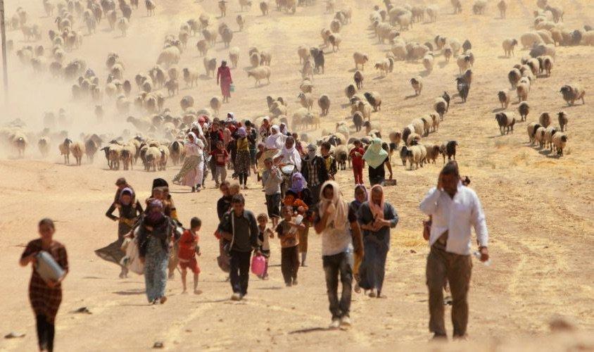 profughi-ambientali